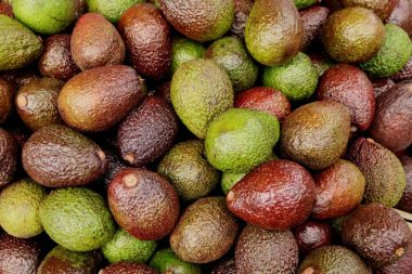 Why Are Avocados Bad for the Environment