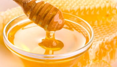 Is Eating Honey Ethical